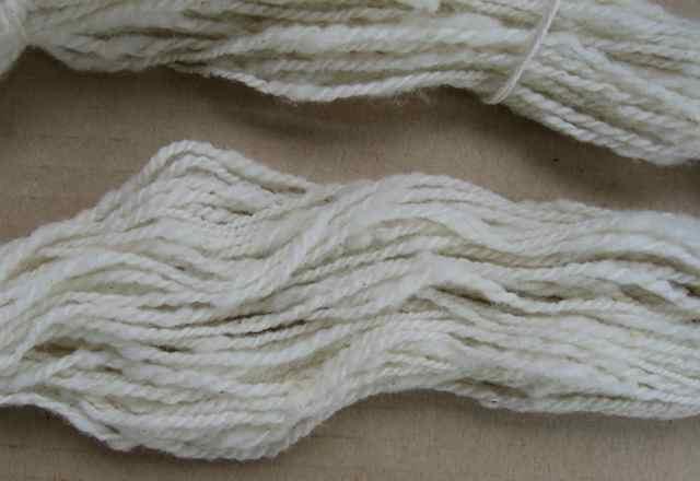 Wool8_2198