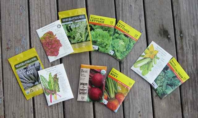 Garden-seeds_2413