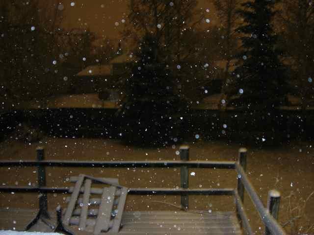 Snow_2234