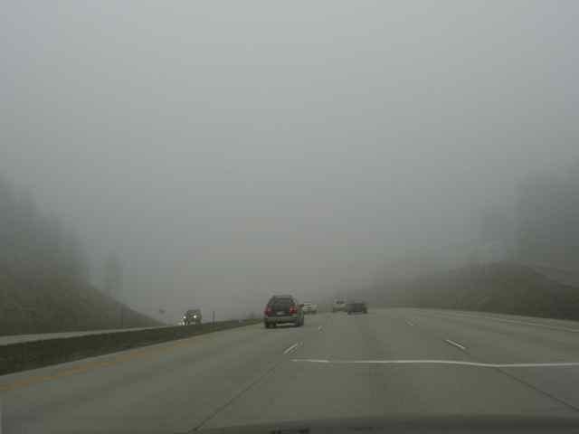 Fog_2356