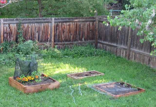 Garden_2639