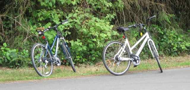 2965-bikes