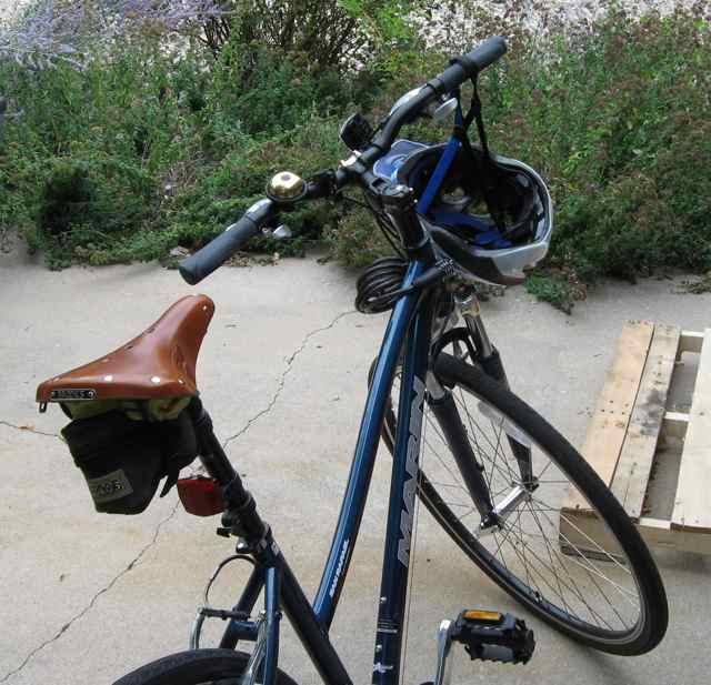 IMG_3173-saddle