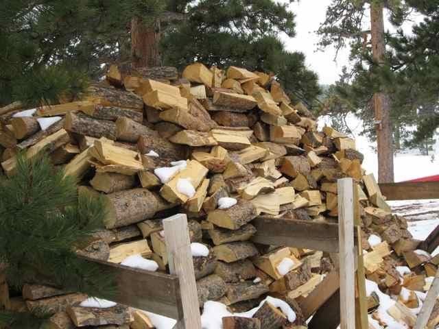 Wood_3695
