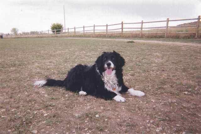 2002-05-19-Ariel037