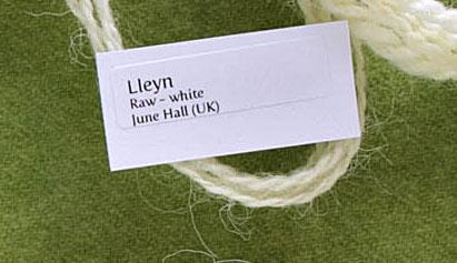Lleyn1