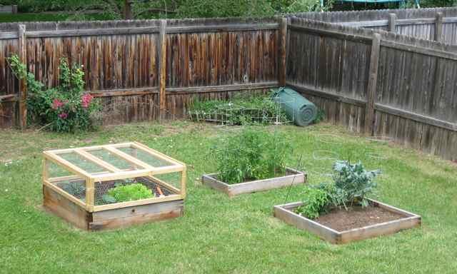Garden0-7-11_4295