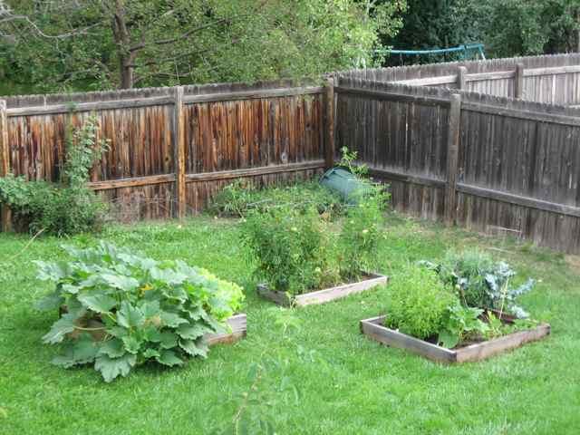 Garden2-8-31_4830