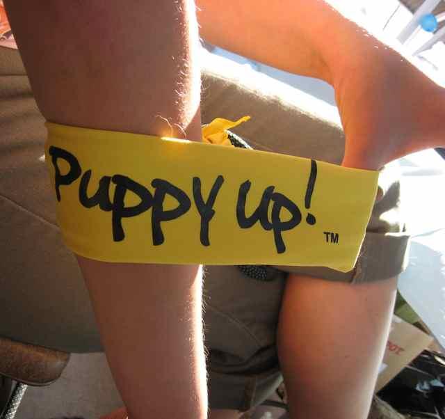 PuppyUp_0350