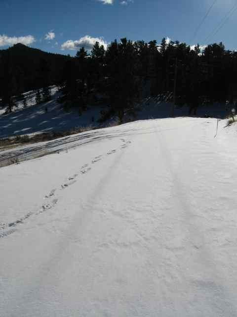 Trail_5217