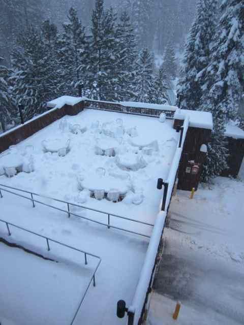 Snow_0603