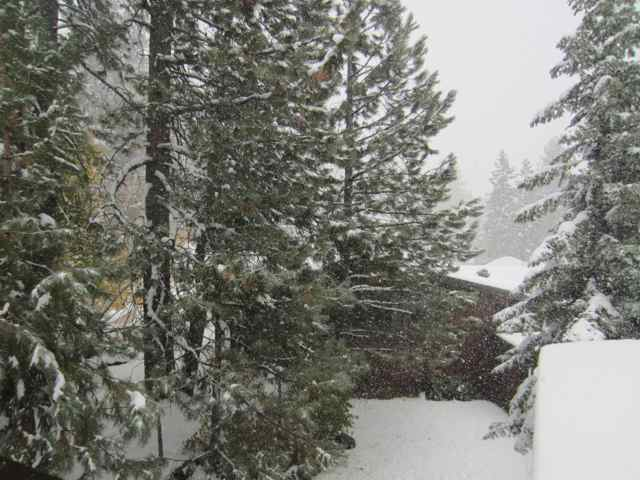 Snow_0608