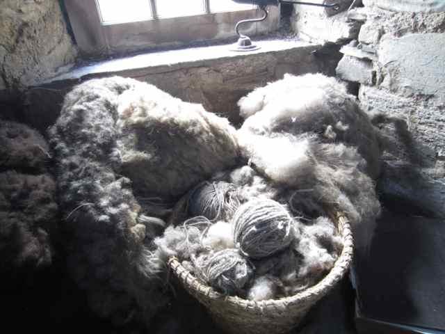 Wool_3708
