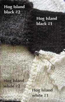 51-HogIsland_5802-crop