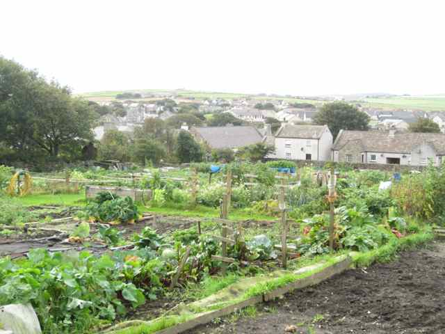 07-allotment_4103