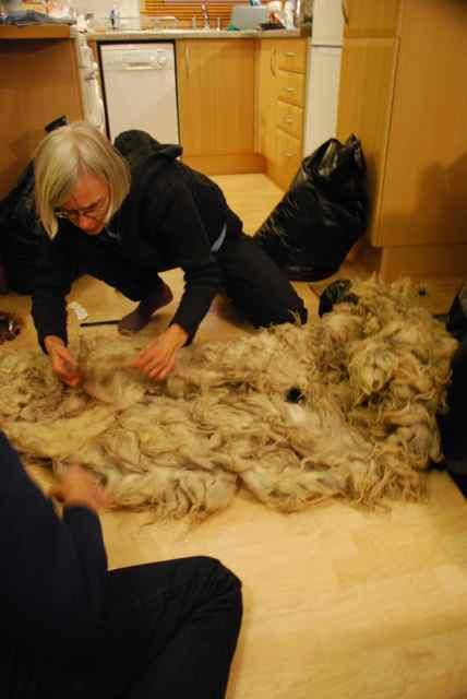 11-Fleece-Jeni 28-05-2012 04 31 24