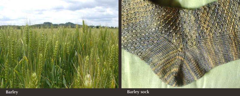 WEB-barley-combination