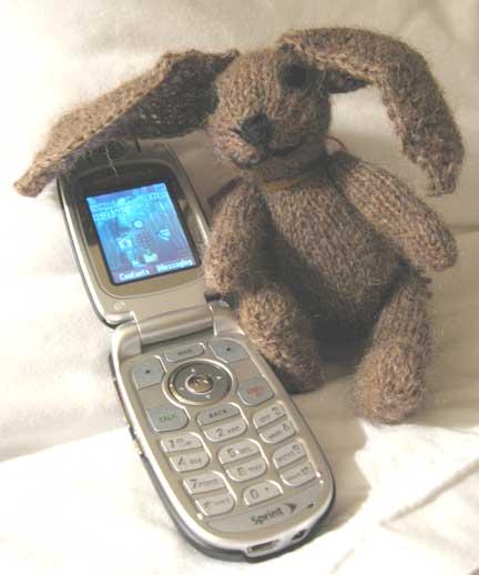 Bunnyimg_0208web