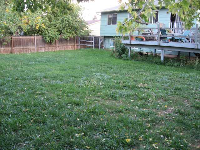 Yard_1679